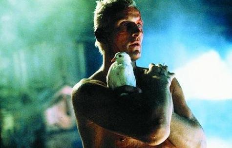 Blade Runner rutger